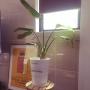 etsurio.ryuさんのお部屋写真 #4