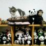 lovepandaさんのお部屋写真 #2