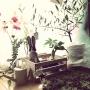 mogmogme_0330さんのお部屋写真 #3