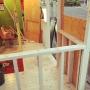 toyboxさんのお部屋写真 #3