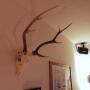 Isamuさんのお部屋写真 #4