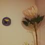mirinさんのお部屋写真 #2