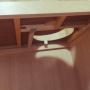 mokaさんのお部屋写真 #4