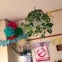 chocolinaさんのお部屋写真 #4