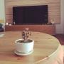 Takahiroさんのお部屋写真 #5