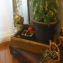 citronさんのお部屋写真 #2