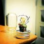ramuchop3000さんのお部屋写真 #4