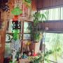 kikuさんのお部屋写真 #4