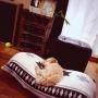 justinbieber.さんのお部屋写真 #2