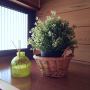 emibutaさんのお部屋写真 #2