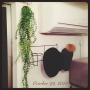 azukiさんのお部屋写真 #3