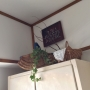 leonaさんのお部屋写真 #4