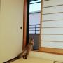 hanaさんのお部屋写真 #3