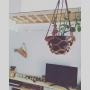 okameさんのお部屋写真 #5