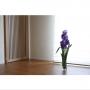 itousanさんのお部屋写真 #3