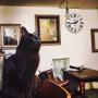 Naoki.さんのお部屋写真 #5