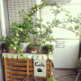 shokoさんのお部屋写真 #4