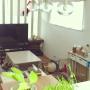 hanakoさんのお部屋写真 #3