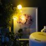 chihiroさんのお部屋写真 #5