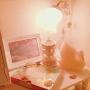 きーちゃんさんのお部屋写真 #2