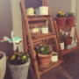 rabiさんのお部屋写真 #2