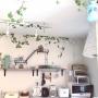 Mauiさんのお部屋写真 #2