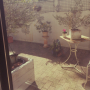 marikaさんのお部屋写真 #5