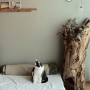 yunさんのお部屋写真 #4