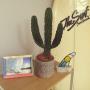 MASAさんのお部屋写真 #5