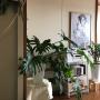 kazuさんのお部屋写真 #5