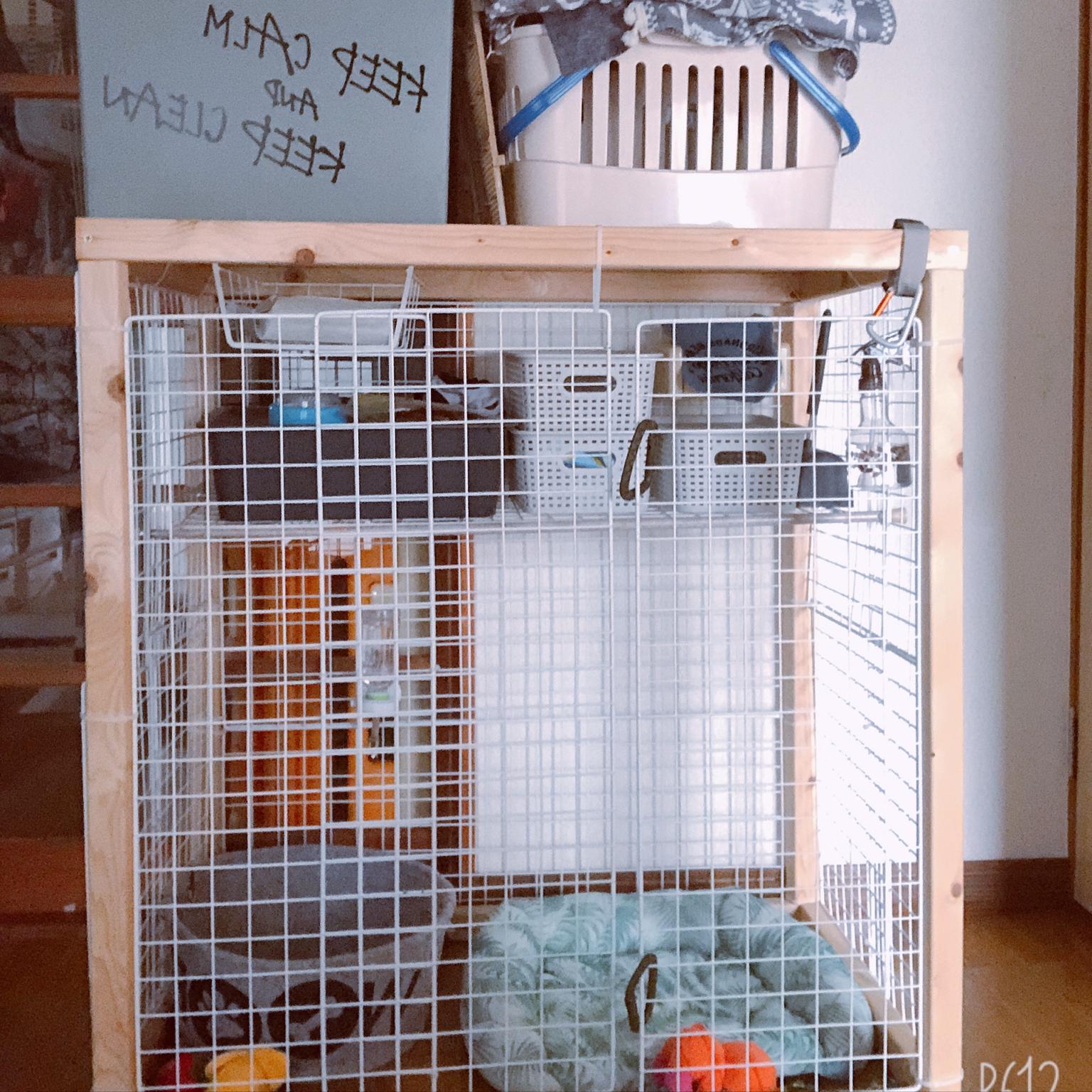ホームワイド/ペットのいる暮らし/100均/DIY/ハンズマンで購入のインテリア実例 - 2020-07-11 17:02:05