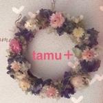 tamu_plusさんのお部屋