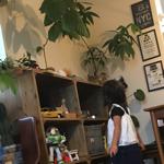Junpeiさんのお部屋