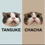 tansukeさんのお部屋