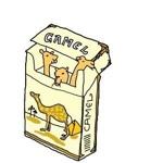camel_313さんのお部屋