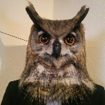 OWLさんのお部屋