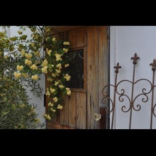 axcis garden & reformさんのお部屋