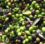 olive.plusさんのお部屋