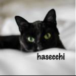 hasecchiさんのお部屋