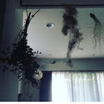 ryokoさんのお部屋