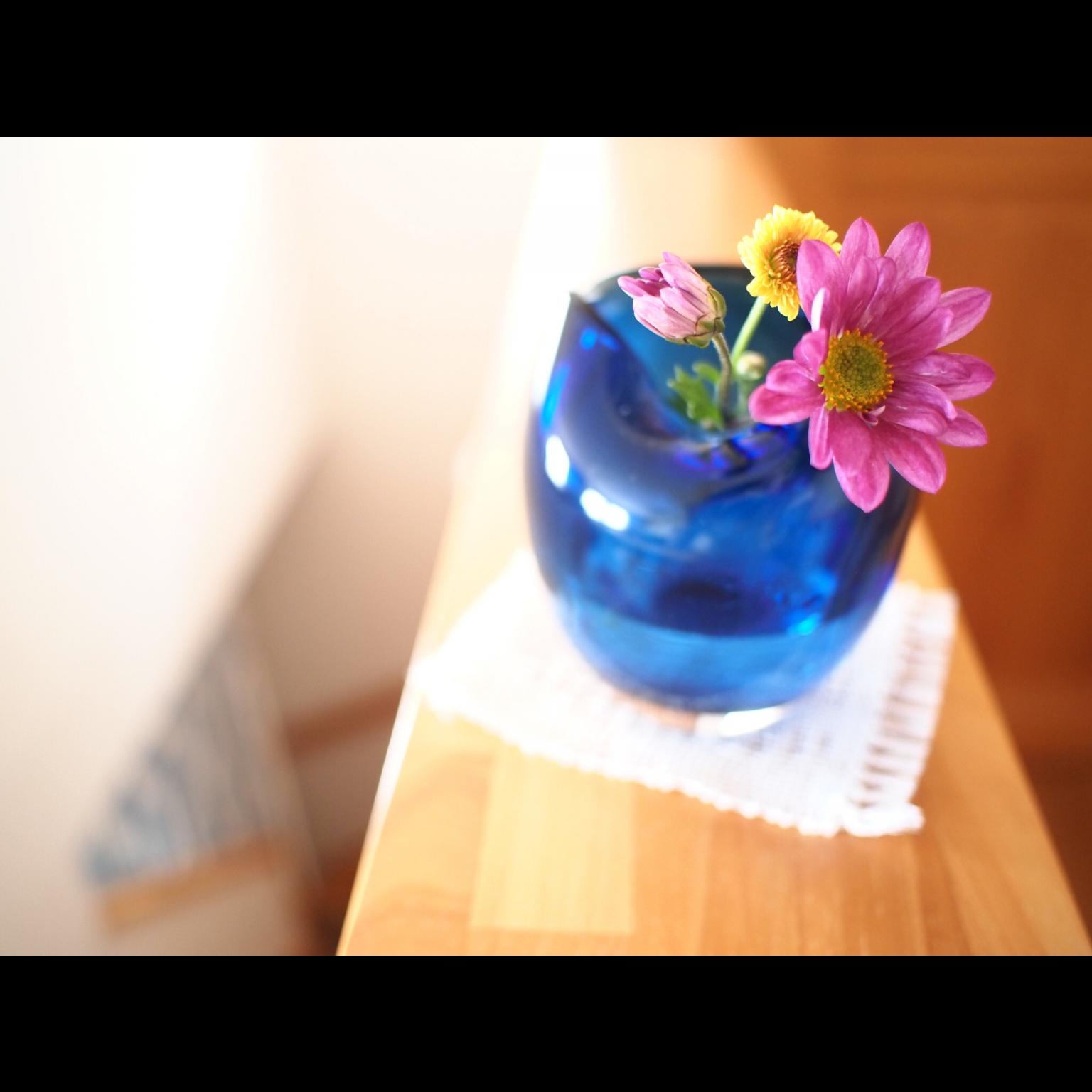 tomomi_kuranさんのお部屋