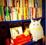 Toshikoさんのお部屋