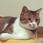 Kasumiさんのお部屋