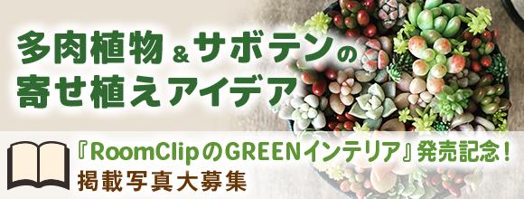 RoomClipのGREENインテリア発売記念!多肉植物&サボテンの寄せ植えアイデアイベント by RoomClip