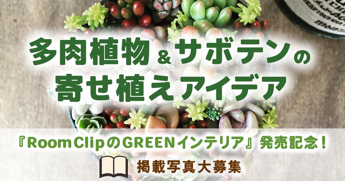 RoomClipのGREENインテリア発売記念!多肉植物&サボテンの寄せ植えアイデア