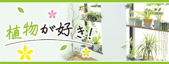 RoomClipのイベント 植物が好き!