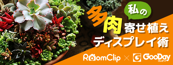 RoomClipのイベント RoomClip×GooDay 私の多肉寄せ植えディスプレイ術