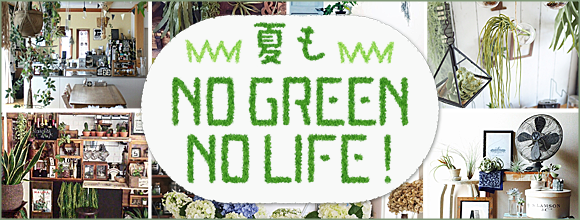 夏もNO GREEN NO LIFE!イベント by RoomClip
