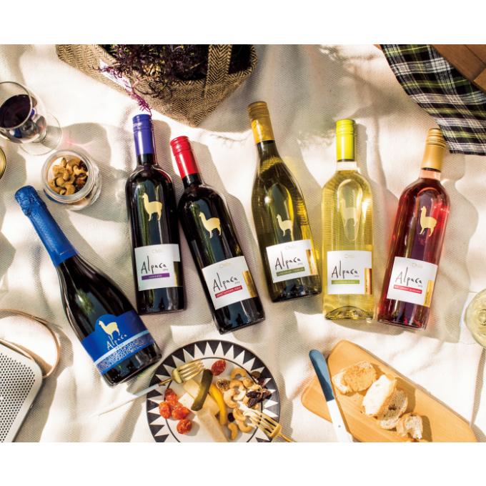 選べる3種類♪個性豊かなワインのセットで、「家飲み」を楽しみたい方大募集!