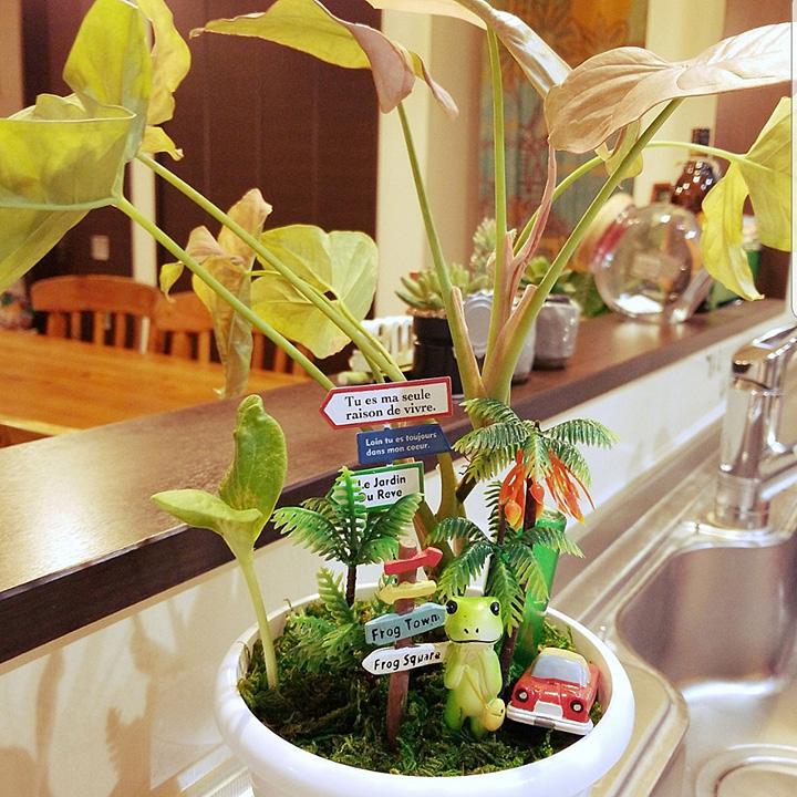 「箱庭感覚で置くだけ!植木鉢をかわいく変える簡単メソッド」 by Rujuさん
